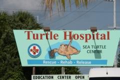 Florida_20140716_137
